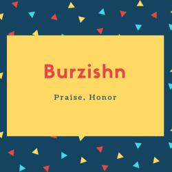 Burzishn Name Meaning Praise, Honor