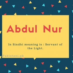 Abdul nur name meaning In Sindhi meaning is - Servant of the Light.