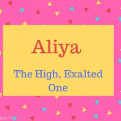 Aliya Name Meaning The High, Exalted One
