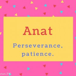 Anat Name Meaning Perseverance, patience.