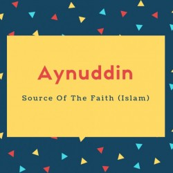 Aynuddin Name Meaning Source Of The Faith (Islam)