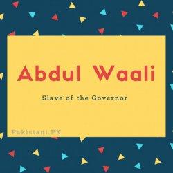 Abdul Waali