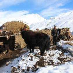 Pamir Valley Chitral 1