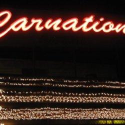 Carnation Lawn