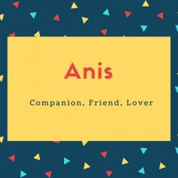 Anis Name Meaning Companion, Friend, Lover