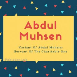 Abdul Muhsen name meaning Variant Of Abdal Muhsin- Servant Of The Charitable One.