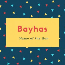 Bayhas Name Meaning Name of the lion