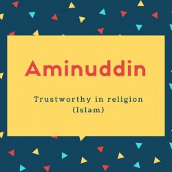 Aminuddin Name Meaning Trustworthy in religion (Islam)