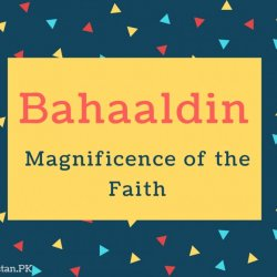 Bahaaldin Name Meaning Magnificence of the Faith