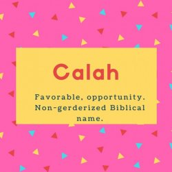 Calah Name Meaning Favorable, opportunity. Non-gerderized Biblical name