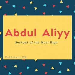 Abdul Aliyy