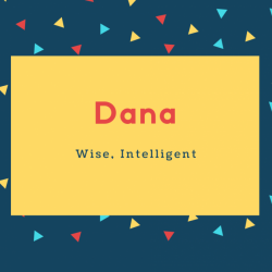 Dana Name Meaning Wise, Intelligent