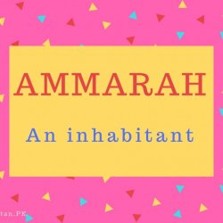 Ammarah Name Meaning An inhabitant.
