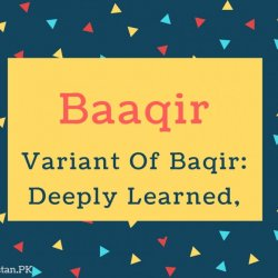 Baaqir Name Meaning Variant Of Baqir- Deeply Learned, Genius