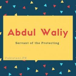 Abdul Waliy