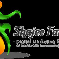 Shajee Fareedi