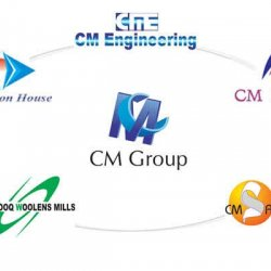 CM ENGINEERING (PVT) LTD Logo
