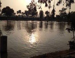 Chaman Zar Askari Lake Park 6