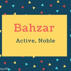 Bahzar Name Meaning Active, Noble