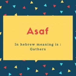 Asaf Name Meaning In hebrew meaning is _ Gathers