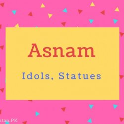Asnam name Meaning Idols, Statues.