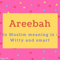 Areebah Name Meaning In Muslim meaning is - Witty and smart
