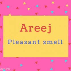 Areej Name Meaning Pleasant smell.
