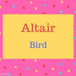 Altair Name Meaning Bird