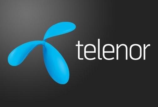 Telenor Monthly Easy Card 800