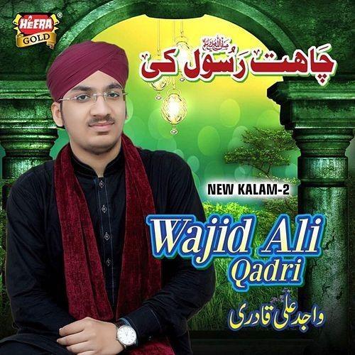 Wajid Ali Qadri
