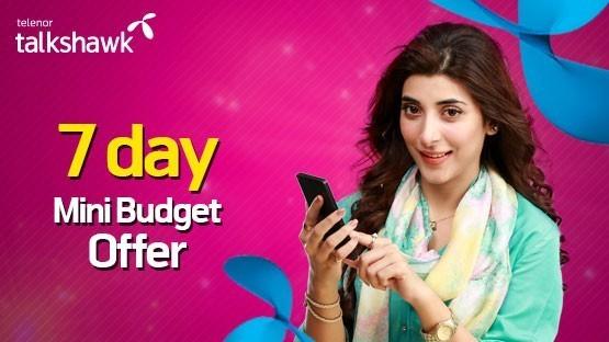 7 Day Mini Budget
