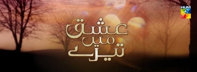 Ishq Mein Teray