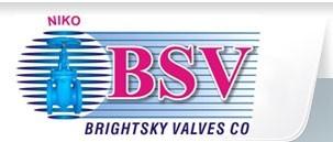 Brightsky Valves & Company