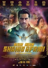 Main Hoon Shahid Afridi (2013)