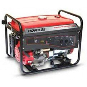 Homage HGR 6.00KV-D with ATS Petrol Generator