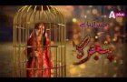 Pinjra Drama Serial Full  OST By APLUS TV