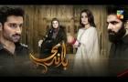 Baandi | HUM TV | Drama