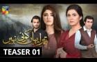 Tera Yahan Koi Nahin | Teaser 1 | HUM TV | Drama