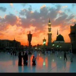 Zulfe Nabi salalahu alayhi wasalam