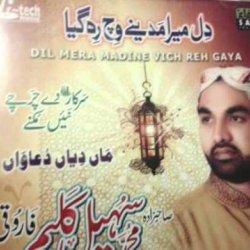 04 - Sahibzada Muhammad Sohail Kaleem Farooqi - Sara Piyar Zamane Da