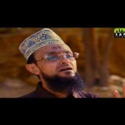 Bas Yehi Dekhte Hain - Naara E Risalat