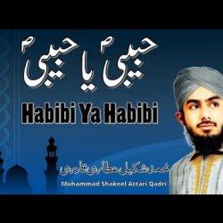 Habibi Ya Habibi